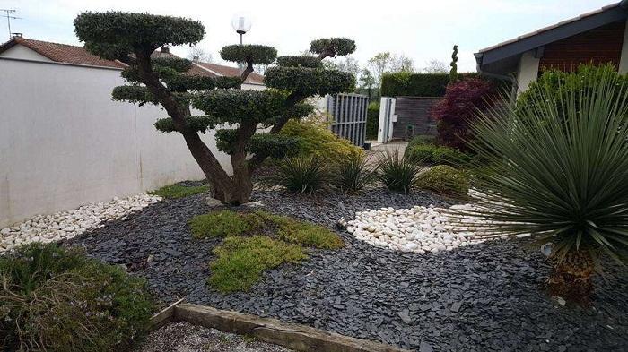 Création jardin à Douai